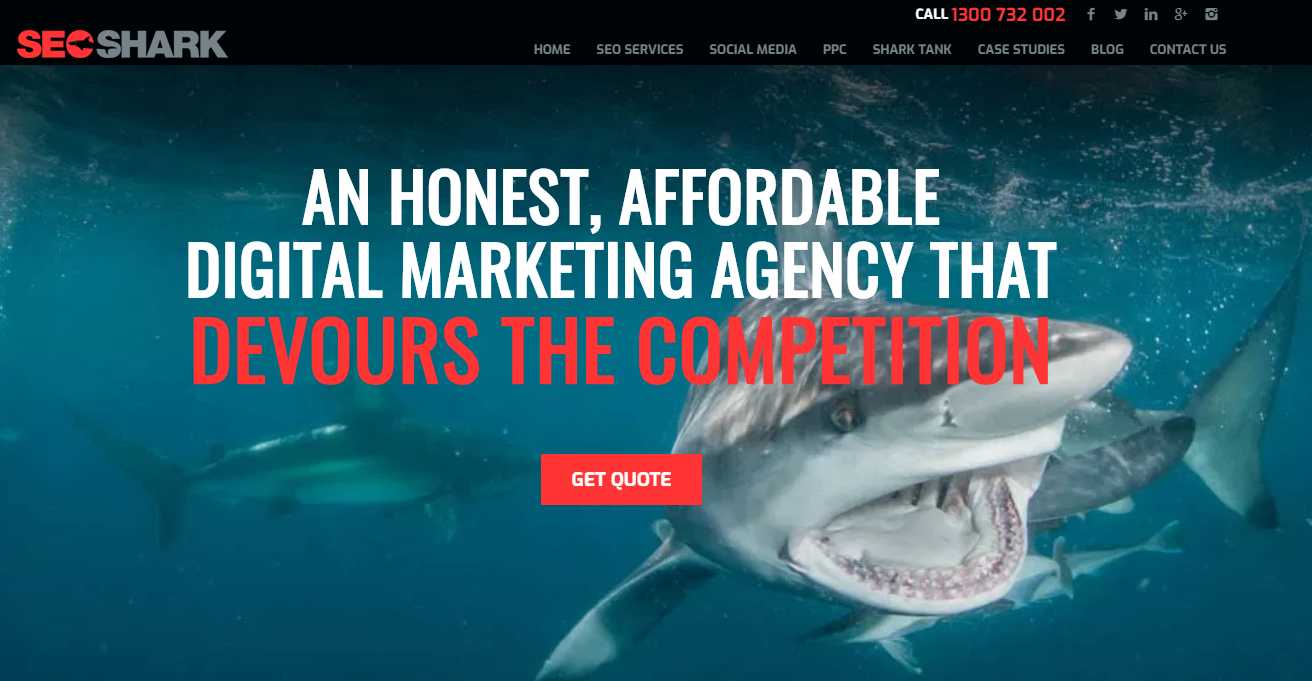 SEO Shark - best SEO agency in Australia